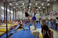 В Туле проверили ближайший резерв российской гимнастики, Фото: 17