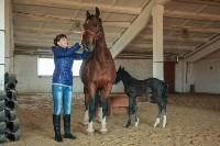 «Куликово поле» объявляет конкурс на лучшее имя для маленькой лошадки, Фото: 3