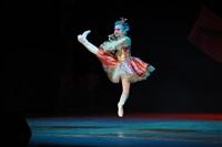 Мисс Тульская область - 2014, Фото: 175