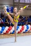 Соревнования по художественной гимнастике 31 марта-1 апреля 2016 года, Фото: 72