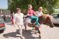 В Тульской области прошел фестиваль крапивы, Фото: 239