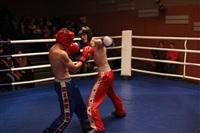 В Туле прошла матчевая встреча звезд кикбоксинга, Фото: 78