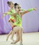 Соревнования «Первые шаги в художественной гимнастике», Фото: 65