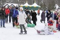 Фестиваль наряженных саней в Центральном парке, Фото: 2