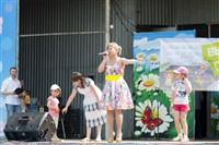 Фестиваль дворовых игр, Фото: 34