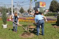 Высадка деревьев и растений ко Дню города, Фото: 10