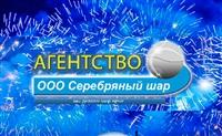 Серебряный шар, агентство праздников, Фото: 1