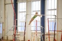 Спортивная гимнастика в Туле 3.12, Фото: 159