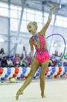 Художественная гимнастика. «Осенний вальс-2015»., Фото: 15