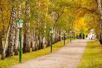 Золотая осень в Туле-2019, Фото: 104