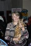 В Туле прошла международная выставка кошек, Фото: 50