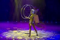 Шоу фонтанов «13 месяцев» в Тульском цирке – подарите себе и близким путевку в сказку!, Фото: 47