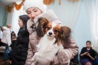 Всероссийская выставка собак 2017, Фото: 71