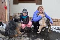 Праздник северных собак на Куликовом поле , Фото: 126