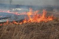 """Возгорание сухой травы напротив ТЦ """"Метро"""", 7.04.2014, Фото: 13"""