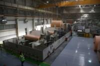 Открытие второй линии производства завода SCA, Фото: 19