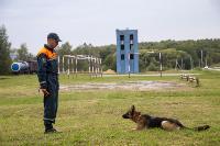 Испытания кинологов в Тульском спасательном центре, Фото: 33