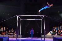Цирковое шоу, Фото: 8