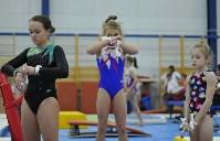 В Туле проверили ближайший резерв российской гимнастики, Фото: 6