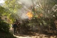 Пожар около Фролова, Фото: 1