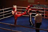 В Туле прошла матчевая встреча звезд кикбоксинга, Фото: 39