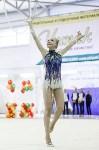 Художественная гимнастика. «Осенний вальс-2015»., Фото: 111
