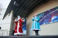 Забег Дедов Морозов, Фото: 11