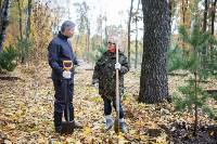 В Центральном парке Тулы появился сосновый бор «Слободы», Фото: 59