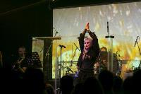 Концерт Линды в Туле, Фото: 40