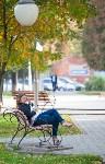 Золотая осень в Тульской области, Фото: 70