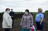 В Тульской области Богородицкий район атаковали мошки, Фото: 17