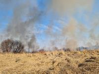 В Федоровке огонь с горящего поля едва не перекинулся на дома, Фото: 26