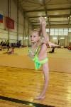 Открытый кубок региона по художественной гимнастике, Фото: 7