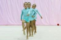 Межрегиональный турнир по художественной гимнастике — «Осенний вальс». 6-7 сентября 2014, Фото: 3