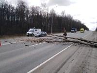 Сильный ветер в Туле повалил деревья, Фото: 11