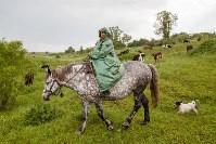 Русское поле фермера Кравцова, Фото: 7