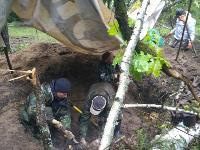 В Тульской области в лесу поисковики нашли захоронение артиллеристов и лошадей, Фото: 2