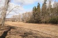 Посадка деревье в Ясной Поляне. 17.04.2015, Фото: 8