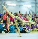 Кубок общества «Авангард» по художественной гимнастики, Фото: 40