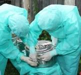 Сотрудники МЧС и Роспотребнадзора учились ликвидировать очаг сибирской язвы, Фото: 9