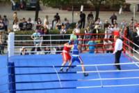 Матчевая встреча по боксу между спортсменами Тулы и Керчи. 13 сентября 2014, Фото: 18