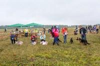 Международная выставка собак, Барсучок. 5.09.2015, Фото: 29