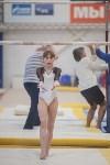 Первенство ЦФО по спортивной гимнастике, Фото: 119