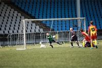 Региональный отборочный турнир Международного фестиваля «Локобол-2014-РЖД», Фото: 31
