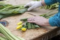 Тюльпаны , Фото: 36