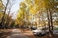 Золотая осень в Тульской области, Фото: 76