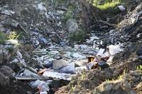 Незаконную свалку на берегу Тулицы спрятали под грудой земли, Фото: 23
