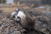 В тульском селе сносят незаконные цыганские постройки, Фото: 20