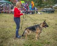 Международная выставка собак, Барсучок. 5.09.2015, Фото: 67