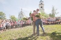 В Тульской области прошел фестиваль крапивы, Фото: 244